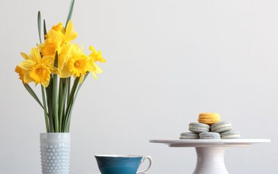 Starting Over for Spring: Updating your Website Content